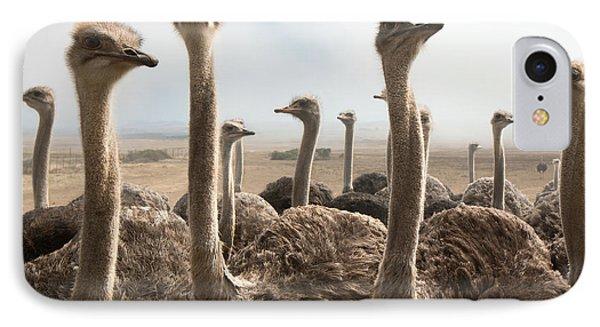 Ostrich iPhone 7 Case - Ostrich Heads by Johan Swanepoel