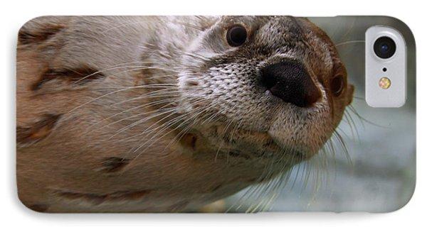 Otter Be Lookin' At You Kid Phone Case by John Haldane