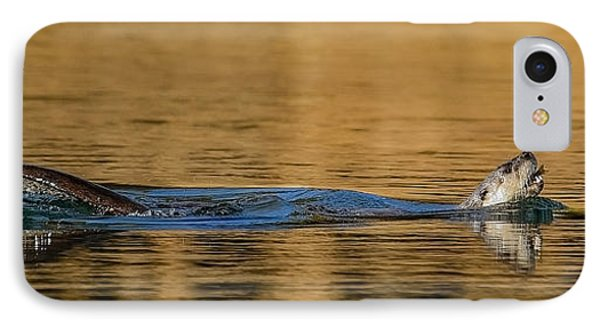 IPhone Case featuring the photograph Otter Catch by Yeates Photography