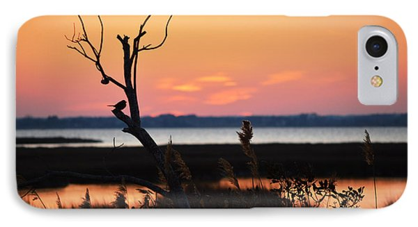 IPhone Case featuring the photograph Ocean City Sunset Out On A Limb by Bill Swartwout