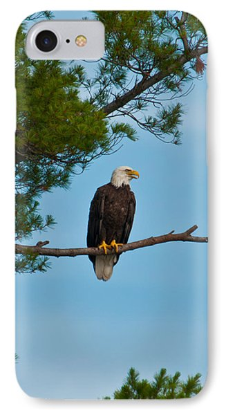 IPhone Case featuring the photograph Out On A Limb by Brenda Jacobs