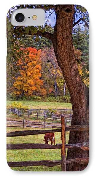 Out To Pasture Phone Case by Joann Vitali