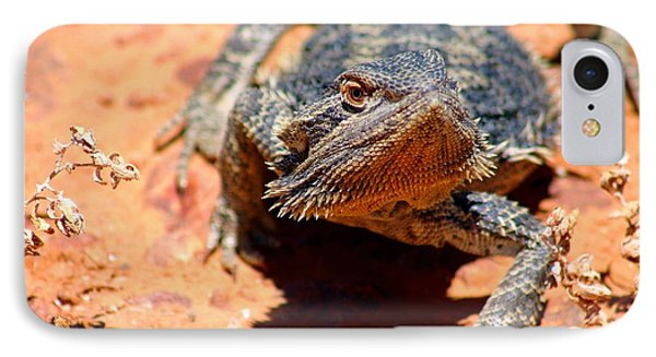 IPhone Case featuring the photograph Outback Lizard 2 by Henry Kowalski