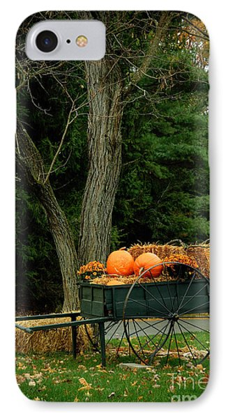 Outdoor Fall Halloween Decorations Phone Case by Amy Cicconi