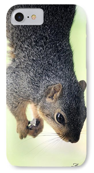 Outdoor Life - Squirrel 2 Phone Case by Angela Rogers