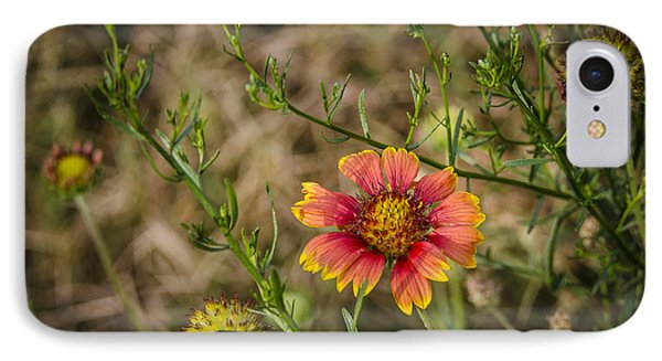 IPhone Case featuring the photograph Outer Banks Wildflower by Bradley Clay