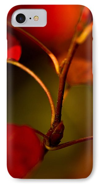 IPhone Case featuring the photograph Outgrowth by Haren Images- Kriss Haren