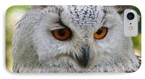IPhone Case featuring the photograph Owl Bird Animal Eagle Owl by Paul Fearn