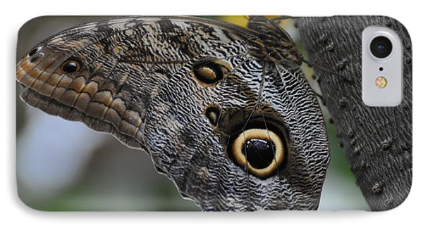 IPhone Case featuring the photograph Owl Butterfly by Bianca Nadeau
