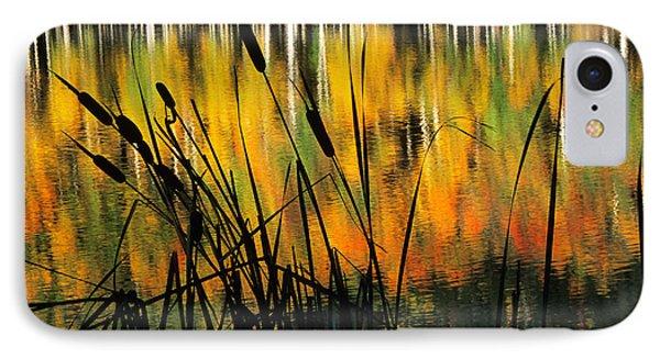 IPhone Case featuring the photograph Owl Creek Pass Fall 3 by Susan Rovira