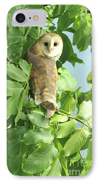 IPhone Case featuring the photograph owl by Rod Wiens