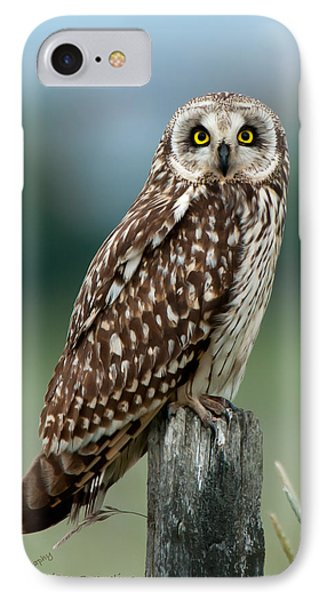 Owl See You IPhone Case by Torbjorn Swenelius
