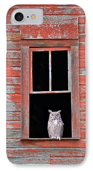 Owl Window IPhone Case by Leland D Howard