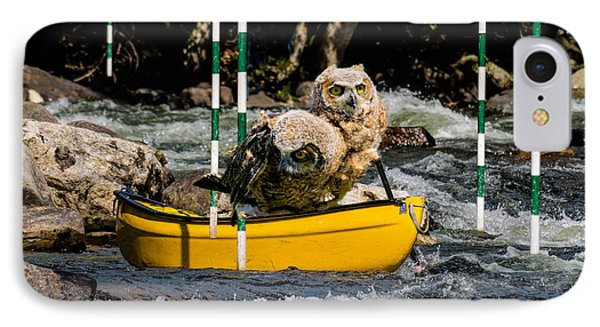 Owlets In A Canoe IPhone Case