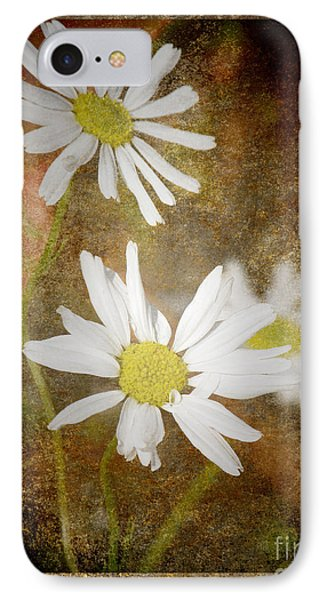Ox Eye Dasies IPhone Case by Lynn Bolt