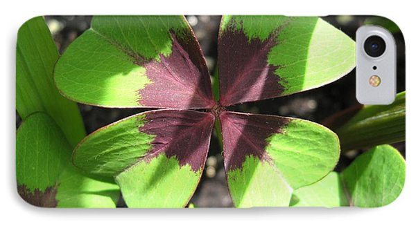 Oxalis Deppei Named Iron Cross IPhone Case