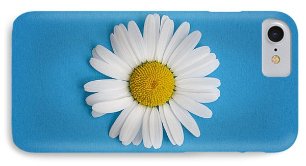 Oxeye Daisy Square Blue IPhone Case