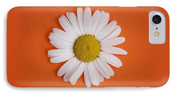 Oxeye Daisy Square Orange IPhone Case