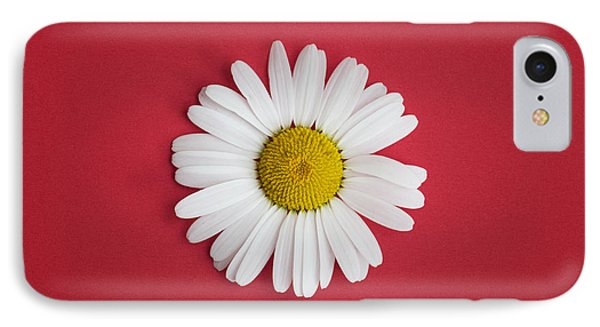Oxeye Daisy Square Red IPhone Case