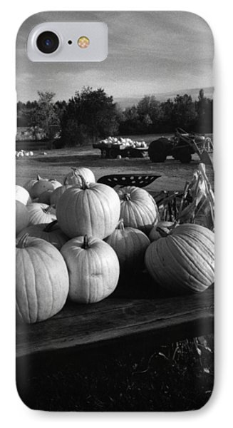Oxford Pumpkins Bw IPhone Case by Cindy McIntyre