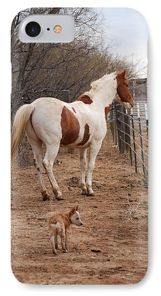 Paint And Heeler IPhone Case by Thea Wolff
