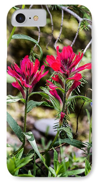 Paintbrush IPhone Case