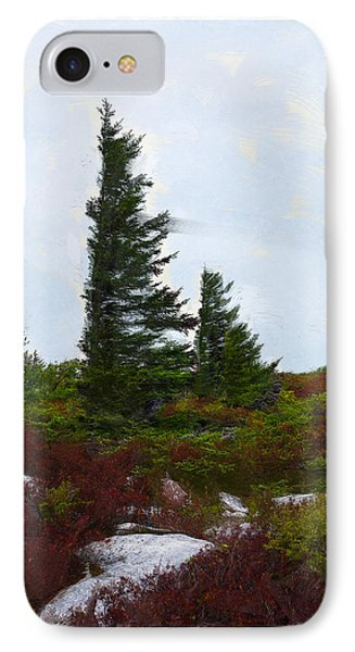 Painted Flagstaff IPhone Case