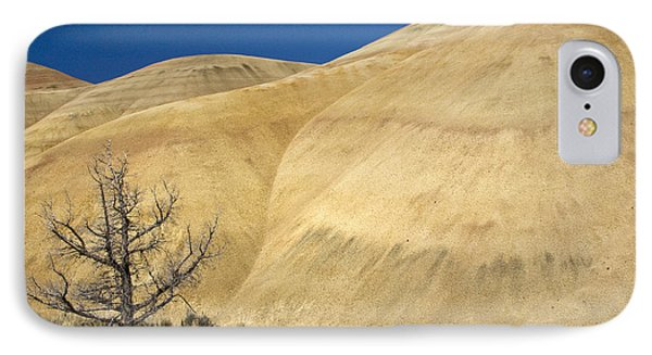 IPhone Case featuring the photograph Painted Hills Tree by Sonya Lang