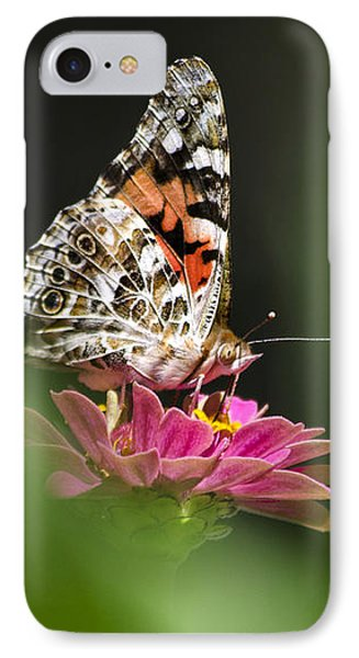 IPhone Case featuring the photograph Painted Lady Butterfly At Rest by Christina Rollo