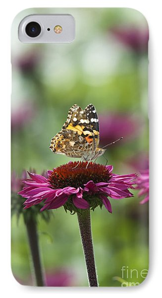 Painted Lady Butterfly  Phone Case by Tim Gainey