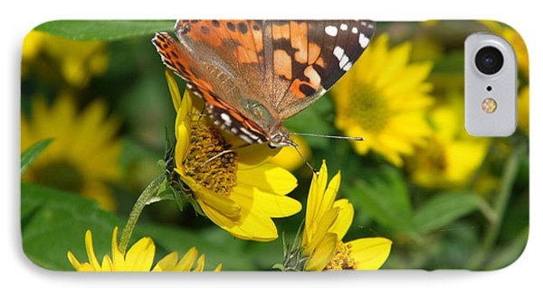 IPhone Case featuring the photograph Painted Lady by James Peterson