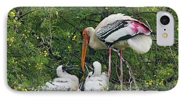 Painted Stork & Young Ones,keoladeo IPhone Case by Jagdeep Rajput