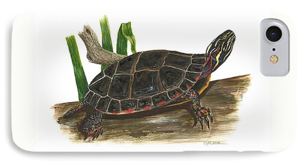 Painted Turtle IPhone Case by Cindy Hitchcock