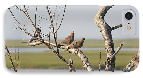 Pair Of Doves IPhone Case by Jim Gillen
