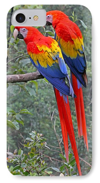 IPhone Case featuring the photograph Pair Of Scarlet Mackaws by Peggy Collins