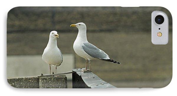 Pair Of Seagulls IPhone Case