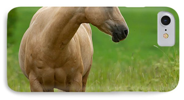 Pale Brown Horse IPhone Case by Torbjorn Swenelius