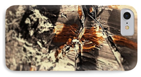 Palette With Sepia Tones  IPhone Case by Delona Seserman