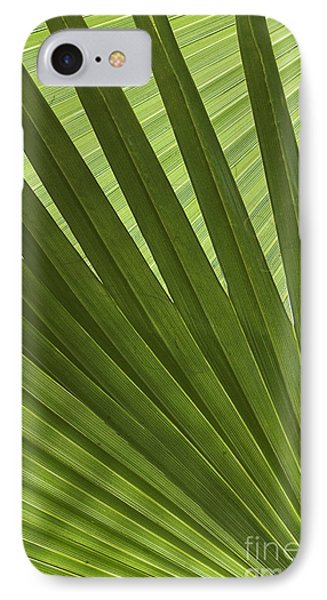 Palm Abstract Phone Case by Patty Colabuono