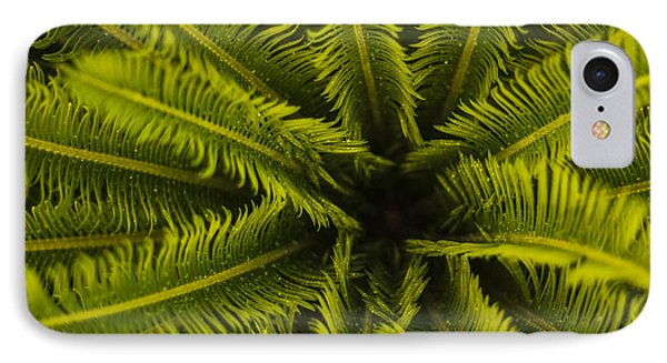 Palm Fronds IPhone Case by Amber Kresge