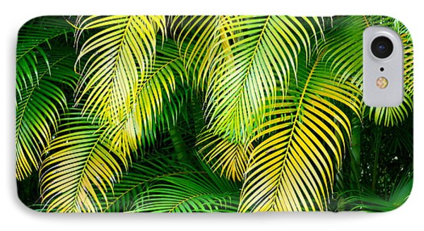 Palm Leaves In Green And Gold IPhone Case by Karon Melillo DeVega