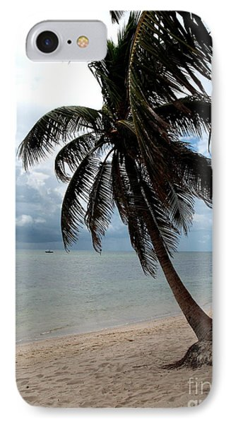 Palm On The Beach IPhone Case by Christiane Schulze Art And Photography