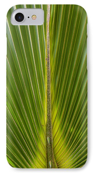 Palm Reader IPhone Case
