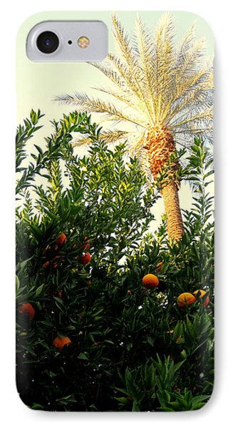 Palm Springs Soul IPhone Case