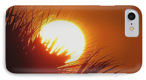 IPhone Case featuring the photograph Palm Sunday by Nikki McInnes