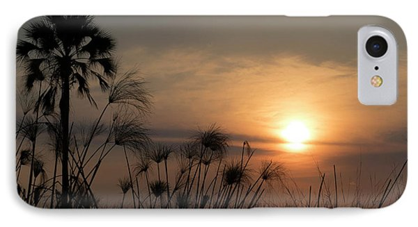 Palm Tree And Papyrus Plants At Dusk IPhone Case by Panoramic Images