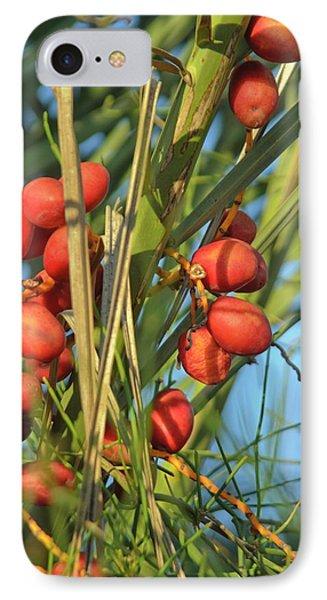 Palm Tree Dates IPhone Case
