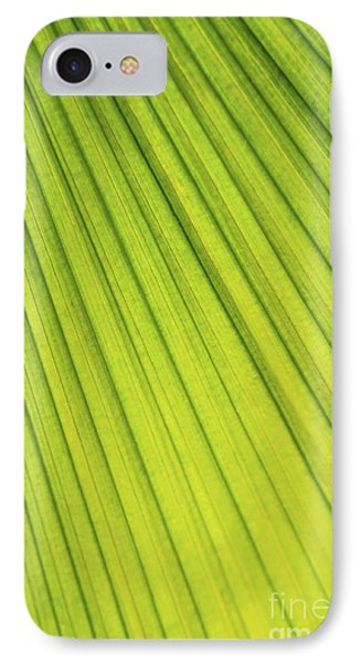 Palm Tree Leaf Abstract Phone Case by Elena Elisseeva