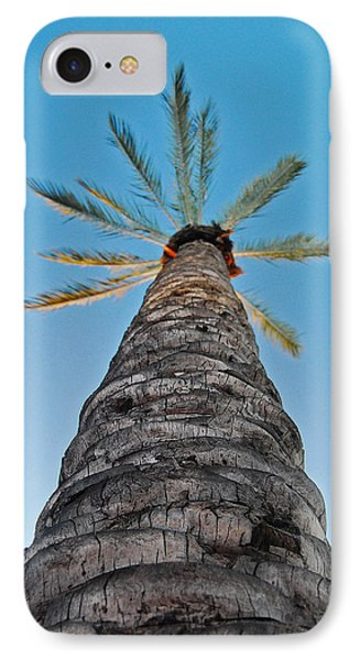 IPhone Case featuring the photograph Palm Tree Looking Up by Maggy Marsh