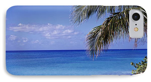 Palm Tree On The Beach, Seven Mile IPhone Case by Panoramic Images